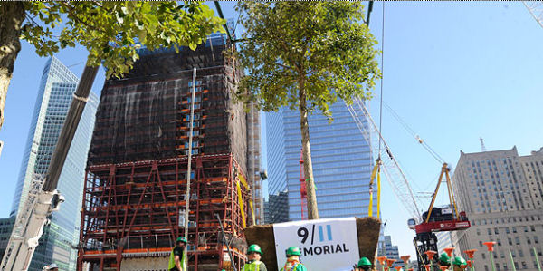 Tree planting at WTC Site - Port Authority of New York and New Jersey