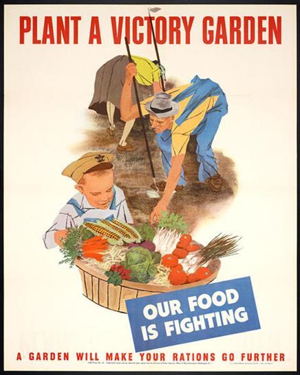 """Plant a Victory Garden"", poster, 1943. The Wolfsonian-Florida International University, Miami Beach, Florida, don de Leonard A. Lauder, 2007.12.45"
