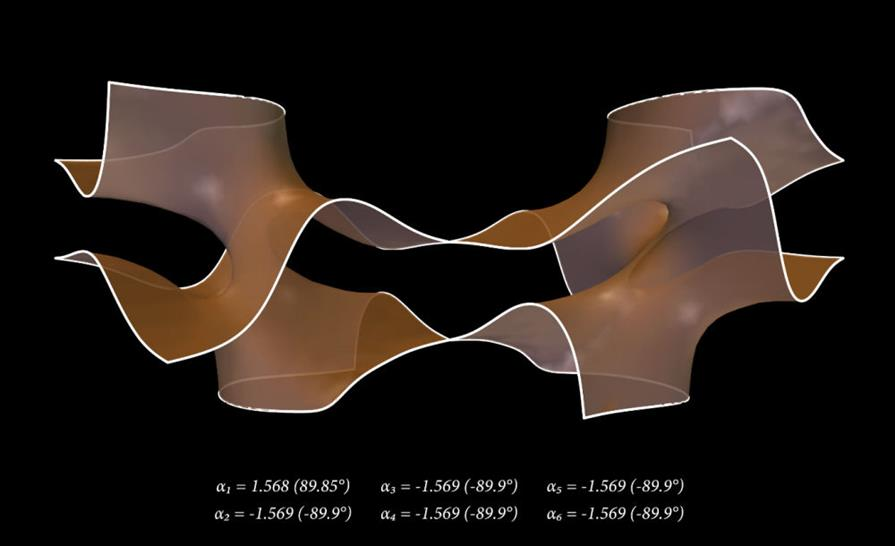 Study of 3D surface variations produced by singular equation