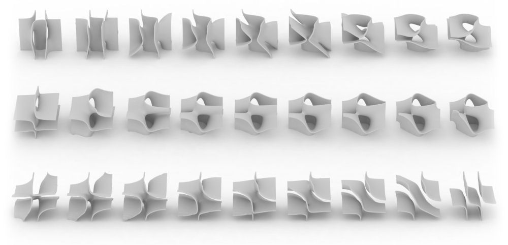 Display Case forms - a series produced by variations within a singular mathematical equation