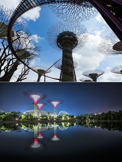 """<a href=""""http://www.worldarchitecturenews.com/index.php?fuseaction=wanappln.projectview&upload_id=19935"""" target=""""_blank"""">Super Trees at Gardens by the Bay</a>"""