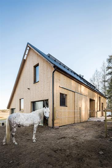 POOK Architects