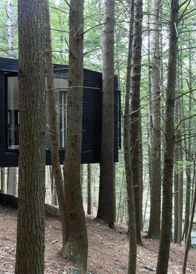 "<a href=""https://backstage.worldarchitecturenews.com/wanawards/project/half-tree-house/"" target=""_blank"">Half-Tree House</a> by Jacobschang Architecture © Noah Kalina"