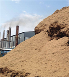 ICF guide to boost biomass in sub-saharan Africa