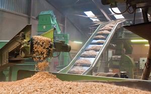 Biomass feedstock policy unclear, UK trade association warns