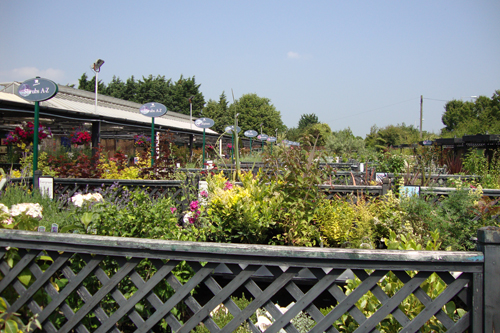 Garden centre sales