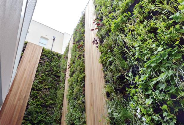 Scotscape reports a rise in orders for projects like this. Image: Scotscape