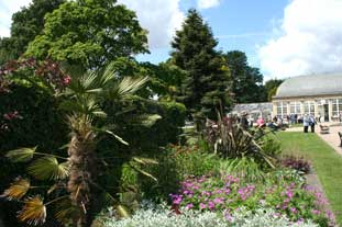 Restored beds at the newly revamped Sheffield Botanical Gardens - photo: HW