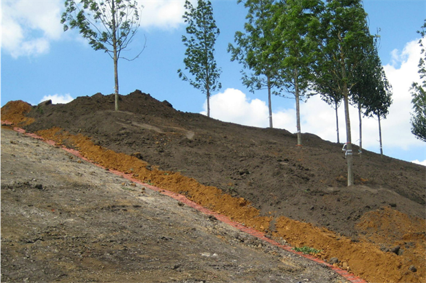A soil profile constructed by Tim O'Hare Associates at Queen Elizabeth Olympic Park. Image: Supplied