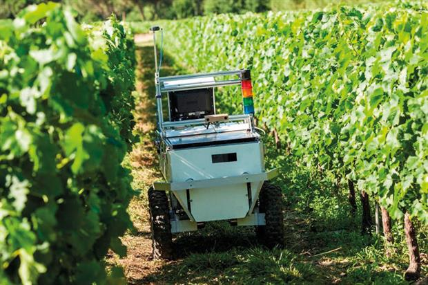 VineRobot: detecting nitrogen content in leaves